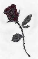 The Rose by warlordblade