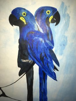 Hyacinth macaws by geovailpintor