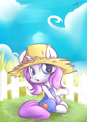 Farmer rarity by kyodashiro