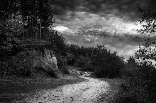 Path through nowhere BW by lapis-lazuri