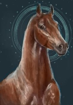 Horse study #2 by CrazyHorseXD