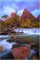 Fall in Zion by tourofnature