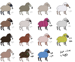 Sheep 01 - 15 (Open) by Scotis