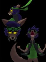 Enraged wolf Kota (colored by ThePiratecoveman) by Lucasfan375
