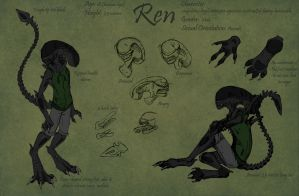 Ren Reference Sheet by Khanashi