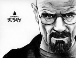 Breaking Bad : Bryan Cranston by intelinside91