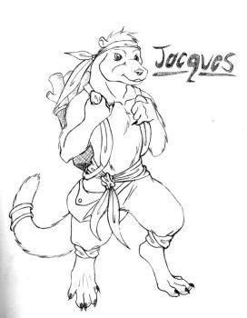 Jacques character sheet by cbs