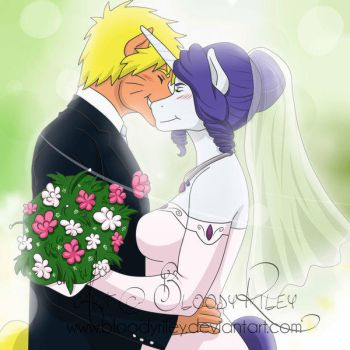 Equestrian Heroes Wedding! by TheRealKyuubi16