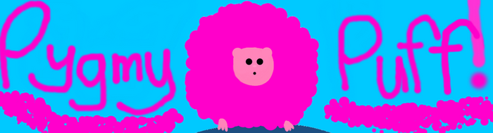 Pygmy Puff! Updated by CassDN12
