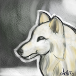 White Wolf by Lunitaire