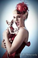 Cici and Morticia - the sphynx by DevillePhotography