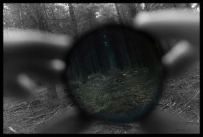 Through The Looking Glass by Art-ography