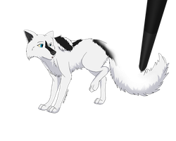 I hassa floof tail :3 by AbnormallyNice
