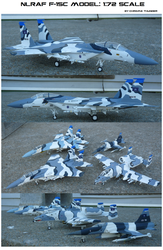 NLR Air Force F-15C Model: 1/72 Scale by lonewolf3878