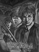 Harry Potter and the Chamber of Secrets by AlyssiaJayde