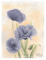 Purple Poppies by LiquidFaeStudios