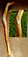 walking stick by savagewerx