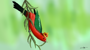 219 - King Parrot by Shasel