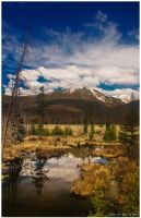 A Summer Morning in Colorado by kkart