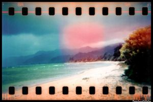 HOLGA 35mm series beach by aaronmcmullen