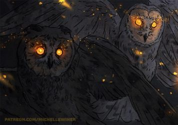 Owls by Michelle-Winer