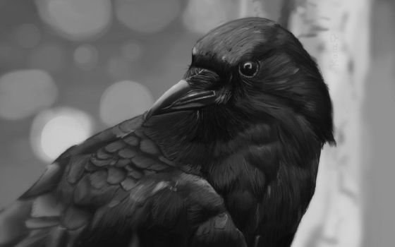 What kind of crows stick together? by KarachiIdiot