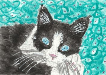 black and white cat face watercolor painting by tulipteardrops