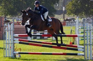 Show Jumping by Sooty-Bunnie