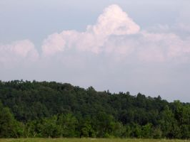 trees and a gaint cloud by DisneyPrincessNeeNee