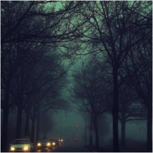 Misty evenings... by ansdesign