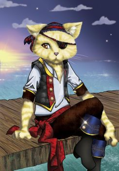 Pirate Kitty Handsome by SelflessDream