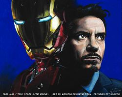 Iron Man + Tony Stark by WolfenM