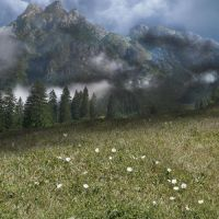 Mountain Field Premade BG by glowbunnyraven