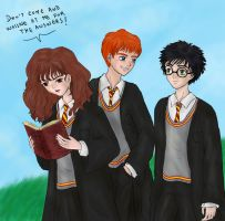 Harry, Ron and Hermione by MissKisa