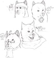 Realistic Hetalia cats 1 by nightwindwolf95