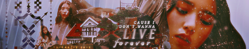 I Don't Wanna Live Forever by Thiraaziz