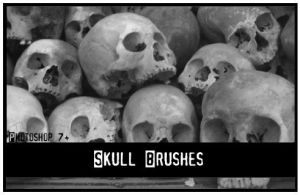 Skull brushes by Synthexstock