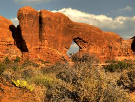 Late in the Day at Arches by papatheo