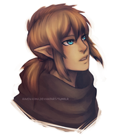 zelda u link -- colour by Raven-igma
