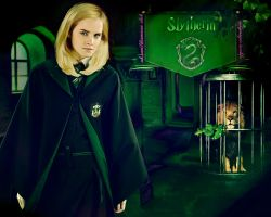 Hermione - Slytherin girl by TayMayer