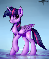 Twilight Sparkle v3 by Setharu