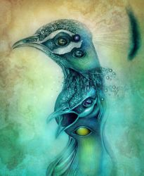 peacock obsession by gepardsim