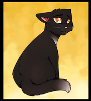 Ravenpaw by Maevery