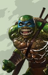 Angry Turtle by Taclobanon