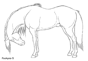 horse side lineart by pookyhorse