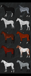 10 Horse Imports by CXCR