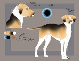 Dog Character Design - Ref Sheet - FOR SALE by LizzardDraws