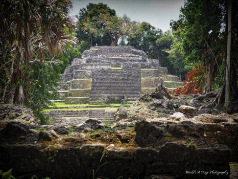 Temple of the Jaguar by tl3319