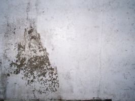 white wall texture macro by dyzv0r