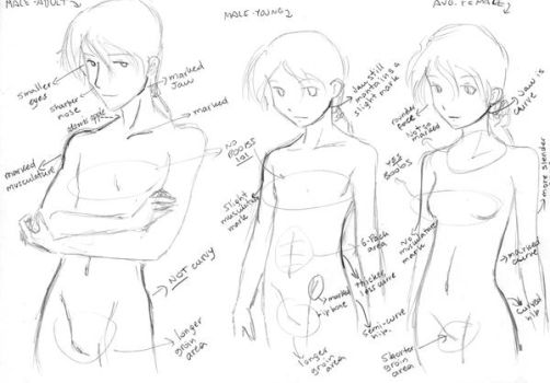 Male and Female bodies by ForsakenChld